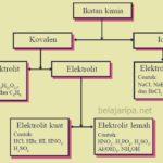 Larutan Elektrolit dan Non Elektronik Beserta Contoh Elektrolit